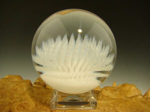 Aaron Slater Anemone Glass Art Marble White Nautical Implosion Ocean Orb