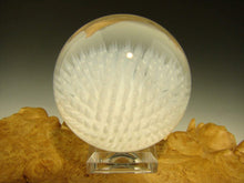 Load image into Gallery viewer, Aaron Slater Anemone Glass Art Marble White Nautical Implosion Ocean Orb