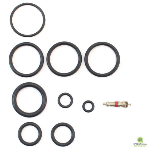 CannondaleExperts.com Cannondale Lefty 32mm 1.0 Abbreviated 100 Hour Seal Kit