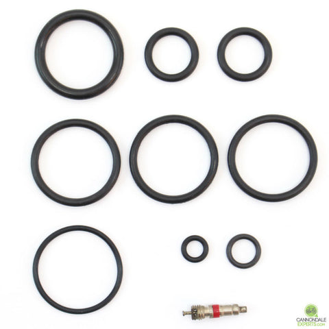 CannondaleExperts.com Cannondale Lefty 36mm 1.0 Abbreviated 100 Hour Seal Kit