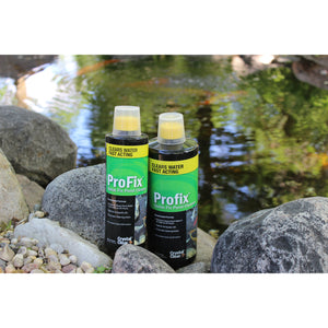 ProFix (formerly D-Solv 9) Quick Fix Pond Cleaner