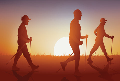 The image shows the silhouettes of three men walking, with each one holding a walking stick as the sunsets in the distance