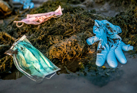 Various PPE (2 masks and a glove) are shown on seaweed by the sea. The items look used and thrown away