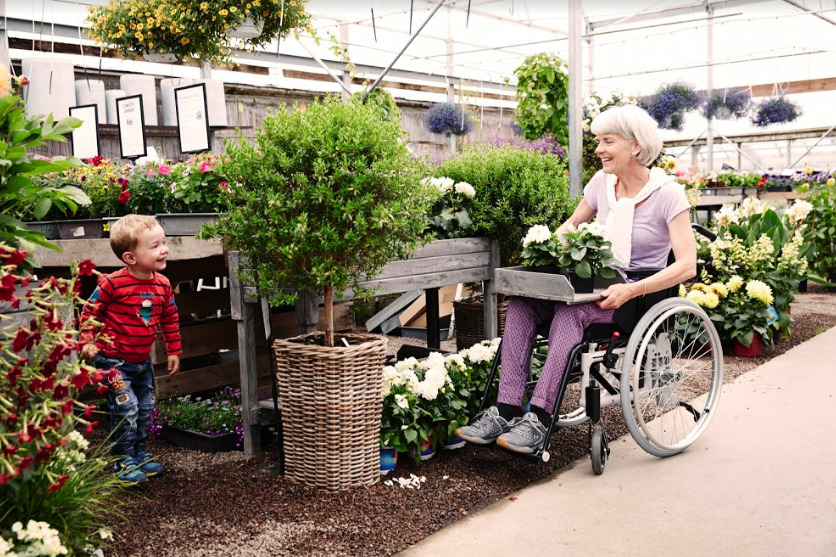 Woman in wheelchair potting plants with grandson
