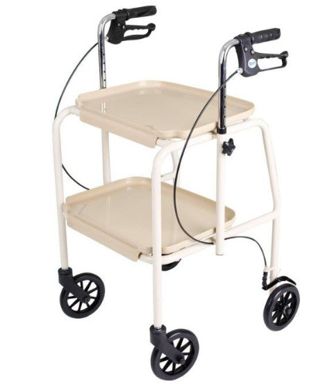 the image shows the trolley zimmer walker