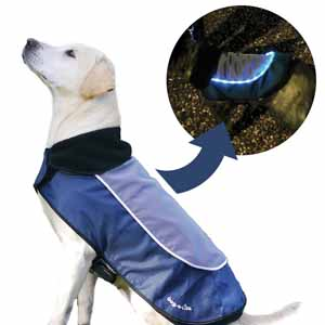 The image shows a golden labrador type dog wearing the Night-Bright LED Jacket both during the day and at night with the light visible