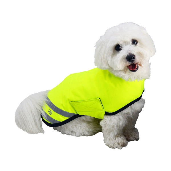 The image shows the HyVIZ Reflector Waterproof Dog Coat on a small dog