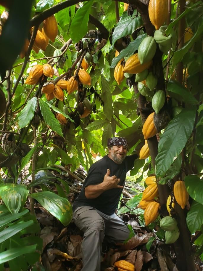 Cacao, Chocolate, and the Pride of Hawaii