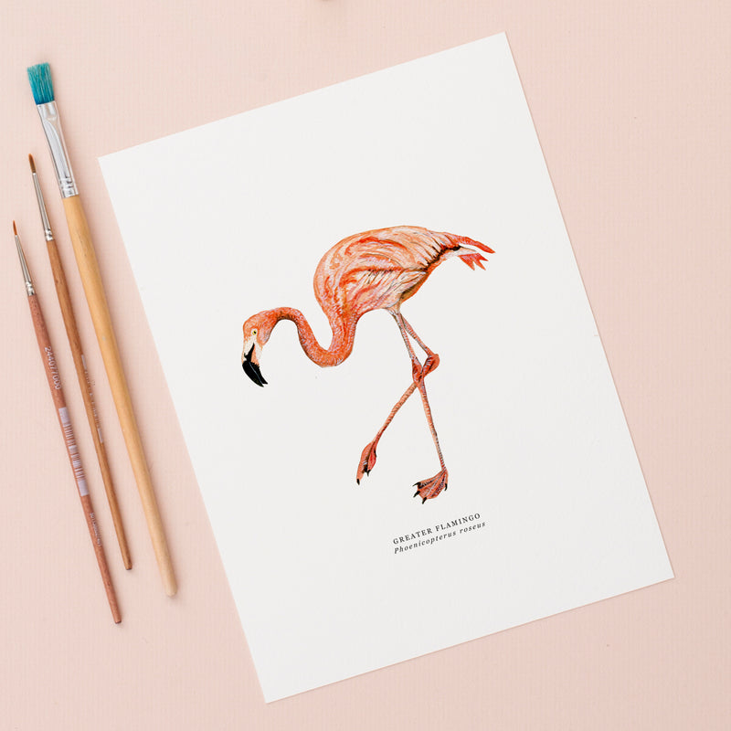 Flamingo Illustrated Giclée Print - 18 x 24 cm