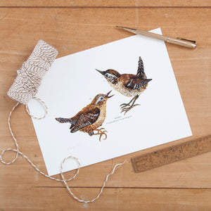Wren Illustrated Giclée Print - 18 x 24 cm