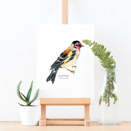 Goldfinch Illustrated Giclée Print -18 x 24 cm