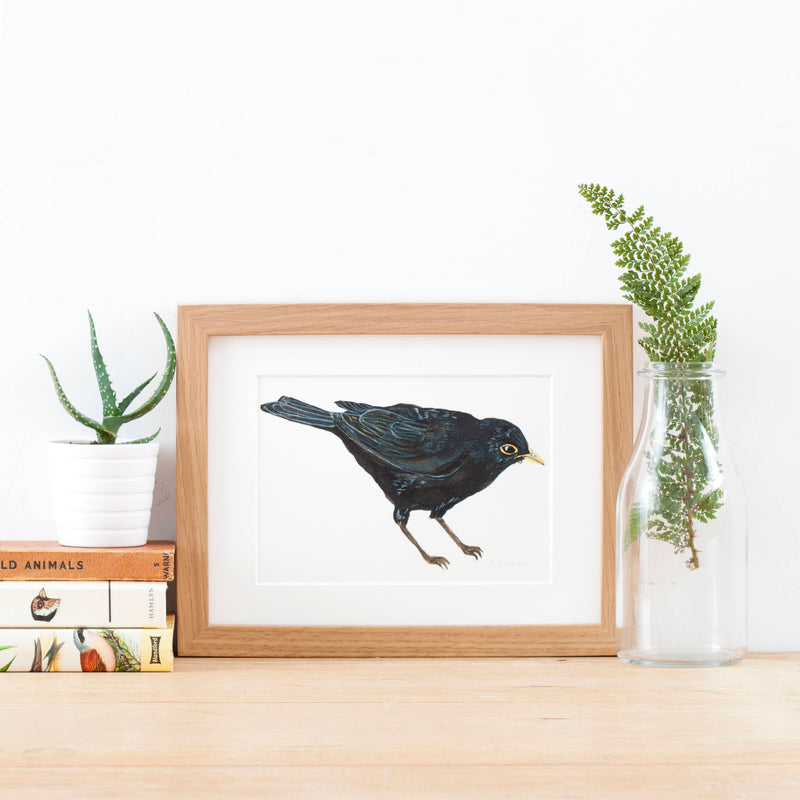 Blackbird Illustrated Giclée Print - 18 x 24 cm