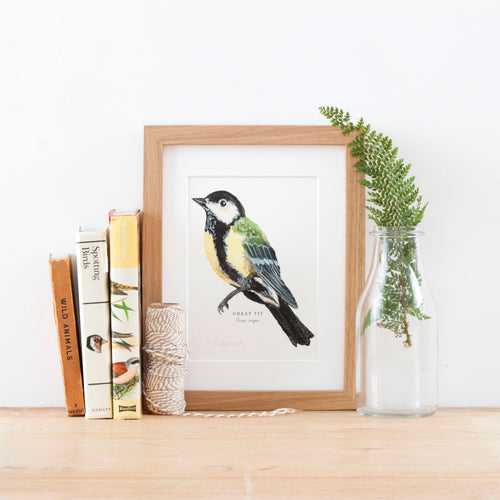 Great Tit Illustrated Giclée Print -18 x 24 cm