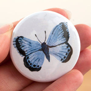 Butterflies & Moths Fridge Magnet Set - Pack of 5