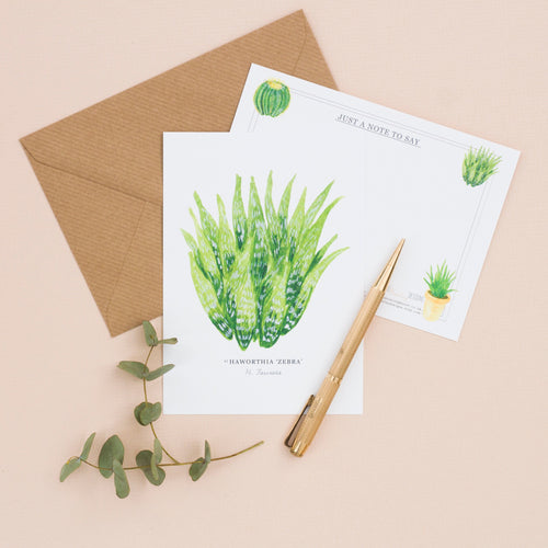 Cacti & Houseplants Set of 6 Illustrated Notelets