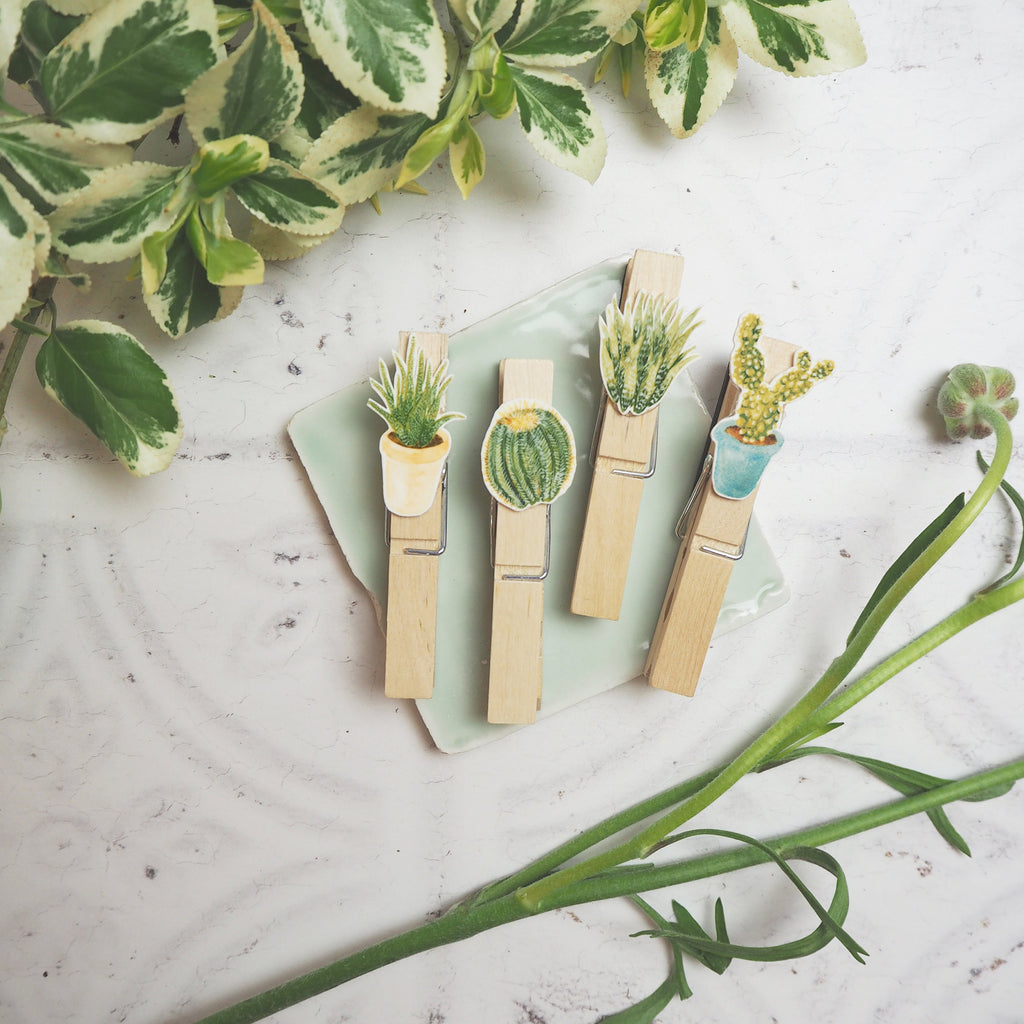 Cacti & Succulents Fridge Magnet Pegs