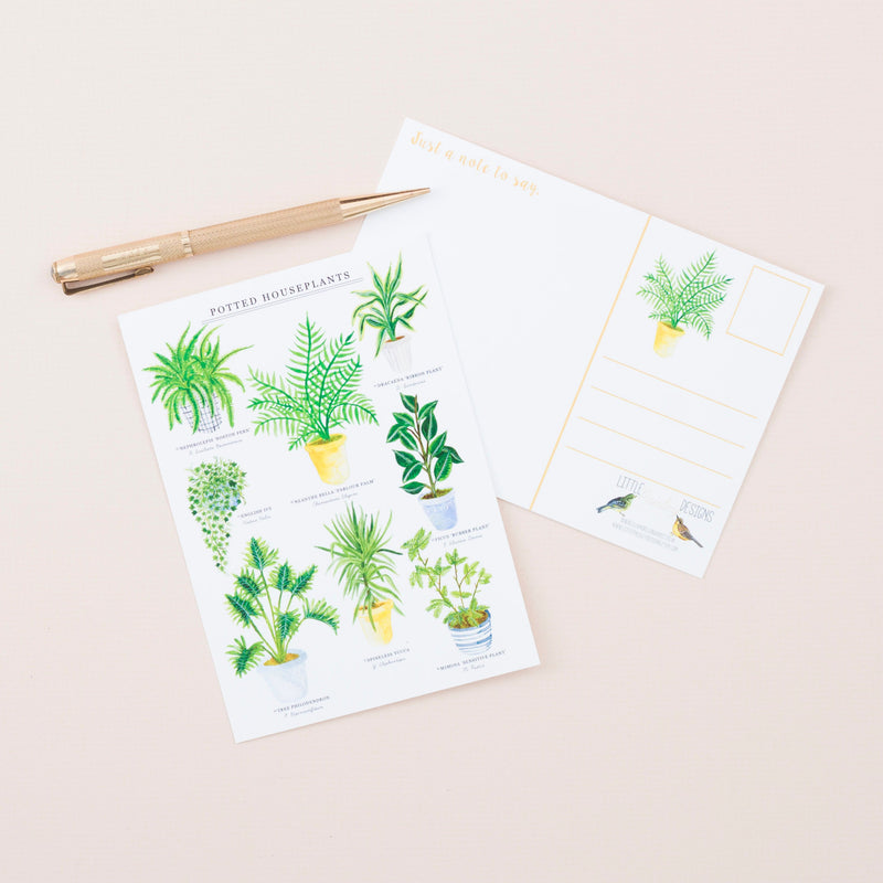 Potted Houseplants Postcard - A6