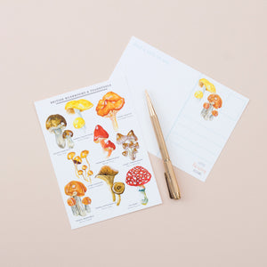 Mushrooms & Toadstools Postcard - A6