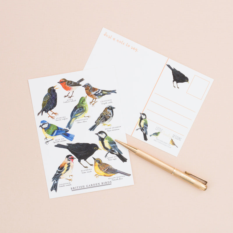 British Garden Birds A6 Postcard