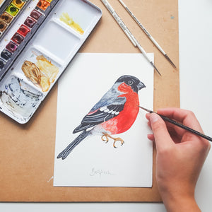 Bullfinch Illustrated Giclée Print - 18 x 24 cm
