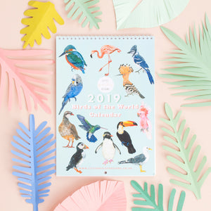 2019 Birds Of The World Wall Calendar