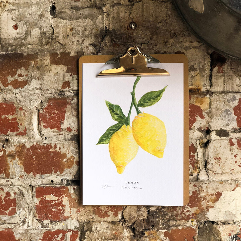 Lemons Illustrated Digital Print - A4