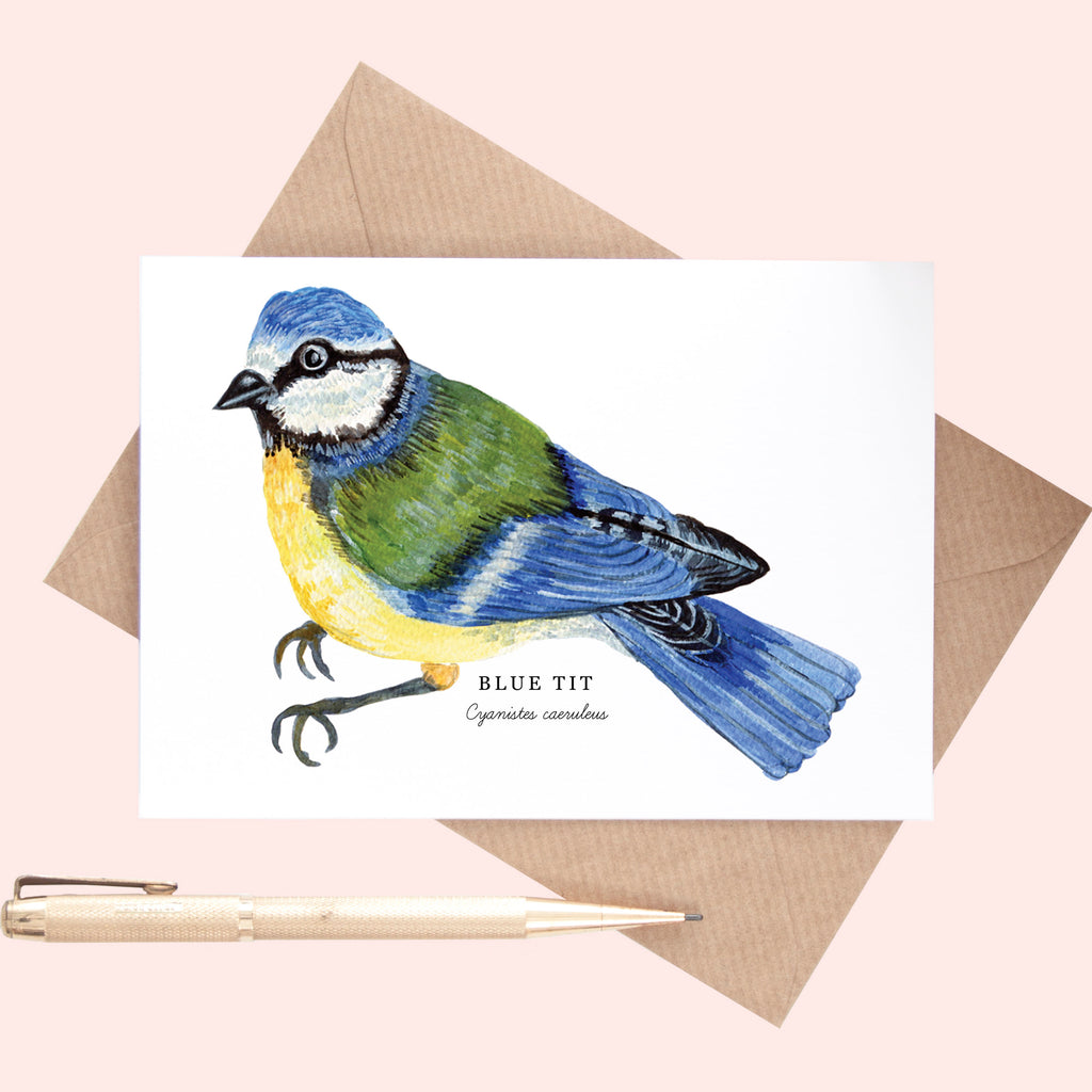 Bluetit Illustration A6 Greeting Card