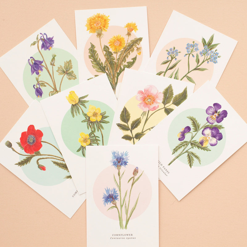 British Wild Flower Notelets - Pack of 8