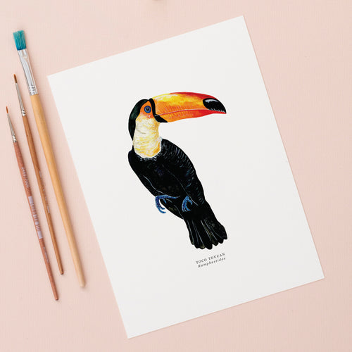 Toucan Illustrated Giclée Print - 18 x 24 cm