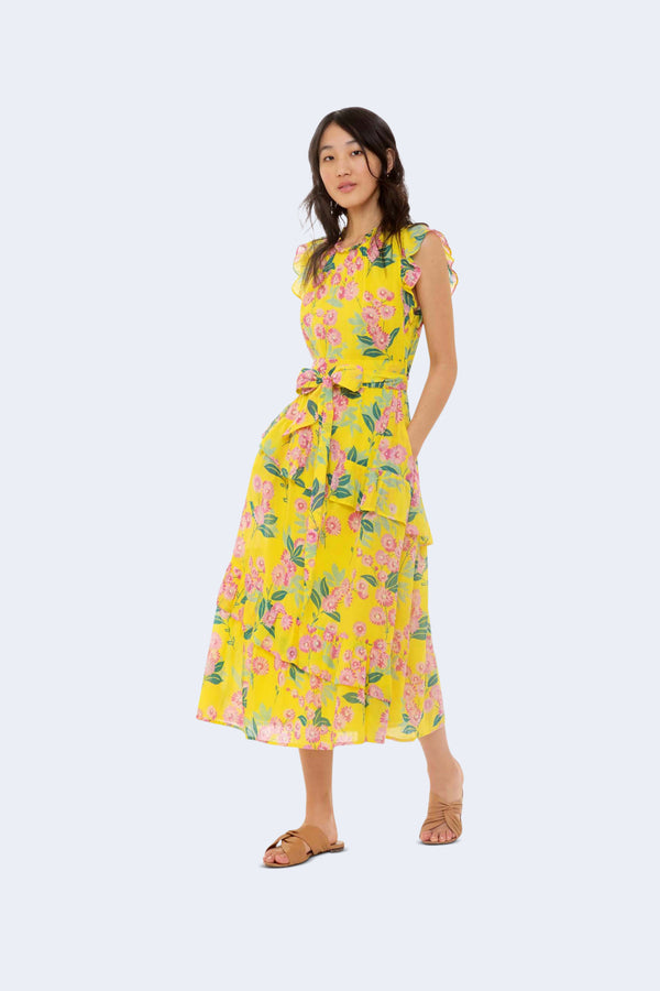 Iris Smocked Cotton Voile Dress in Aurora