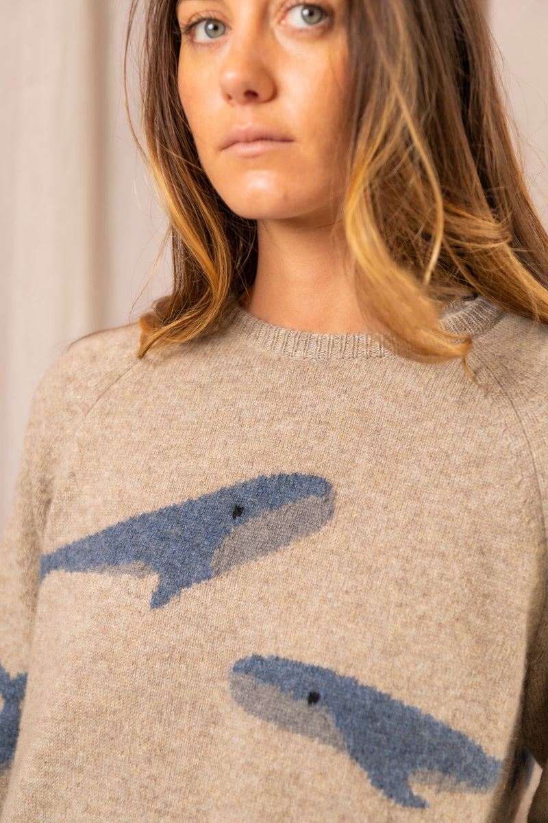 Whale Sweater in Oatmeal Blue