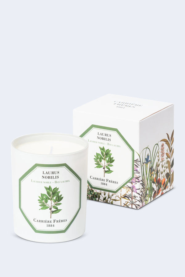 Bay Laurel Candle