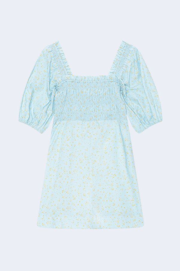 Printed Cotton Poplin Dress in Corydalis Blue