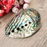 Abalone Shell Smudge Holder - Bohemian Moon Boutique