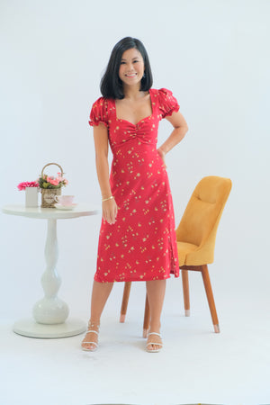 Venice Dress in Cherry Cobbler
