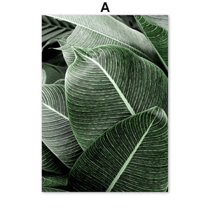 Green Monstera Banana Palm Leaf Wall Art Canvas Painting Nordic Posters And Prints Plants Wall Pictures For Living Room Decor - SallyHomey Life's Beautiful
