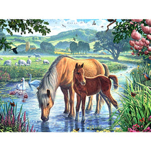Load image into Gallery viewer, DIY 5D Diamond Painting Horse Anmial Mosaic Cross Stitch Kits Diamond Embroidery Full Round Rhinestones Handmade Home Decor - SallyHomey Life's Beautiful