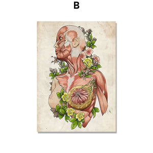 Anatomy Muscle Flower Vintage Poster Wall Art Canvas Painting Nordic Posters And Prints Wall Pictures For Doctor Office Decor - SallyHomey Life's Beautiful