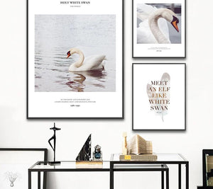 Swan Motivation Scandinavian Poster Art Wall Canvas Print Painting Nordic Style Decorative Picture Minimalist Modern Home Decor - SallyHomey Life's Beautiful