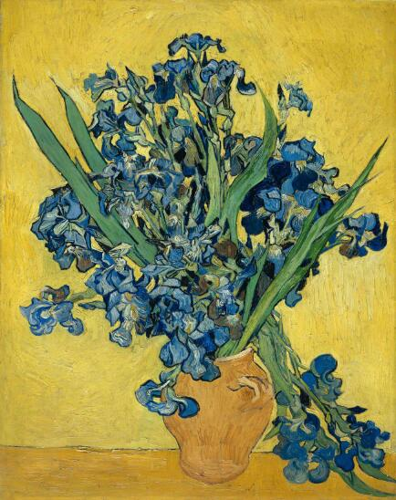 Dutch Post-impressionist Painter Van Gogh Iris Posters and Prints Wall Art Canvas Painting Decorative Pictures for Room Decor - SallyHomey Life's Beautiful
