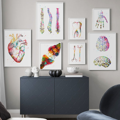 Anatomy Art Human Heart Brain Lungs Wall Art Canvas Painting Nordic Posters And Prints Wall Pictures For Doctor Office Decor - SallyHomey Life's Beautiful