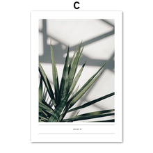 Load image into Gallery viewer, Tropical Flesh Keel Cactus Palm Leaf Wall Art Canvas Painting Nordic Posters And Prints Wall Pictures For Living Room Home Decor - SallyHomey Life's Beautiful