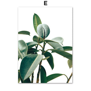 Tropical Monstera Leaf Plant Nordic Posters And Prints Wall Art Canvas Painting Scandinavian Wall Pictures For Living Room Decor - SallyHomey Life's Beautiful