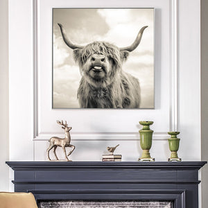70x70cm -  Cute Yak Pictures - SallyHomey Life's Beautiful
