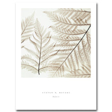 Load image into Gallery viewer, Nordic Decoration Vintage Poster Leaves Plant Wall Art Canvas Prints Minimalist Painting Wall Picture for Living Room Home Decor - SallyHomey Life's Beautiful