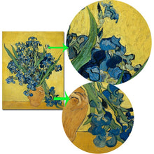 Load image into Gallery viewer, Dutch Post-impressionist Painter Van Gogh Iris Posters and Prints Wall Art Canvas Painting Decorative Pictures for Room Decor - SallyHomey Life's Beautiful