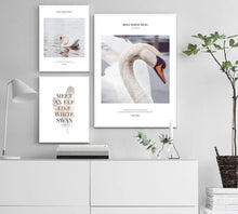 Load image into Gallery viewer, Swan Motivation Scandinavian Poster Art Wall Canvas Print Painting Nordic Style Decorative Picture Minimalist Modern Home Decor - SallyHomey Life's Beautiful