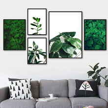 Load image into Gallery viewer, Green Fresh Ferns Leaf Indian Rubber Tree Wall Art Canvas Painting Nordic Posters And Prints Wall Pictures For Living Room Decor - SallyHomey Life's Beautiful