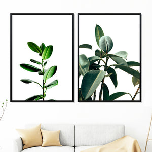 Green Fresh Ferns Leaf Indian Rubber Tree Wall Art Canvas Painting Nordic Posters And Prints Wall Pictures For Living Room Decor - SallyHomey Life's Beautiful