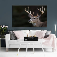 Load image into Gallery viewer, Modern Animals Posters and Prints Wall Art Canvas Painting Deer Pictures - SallyHomey Life's Beautiful